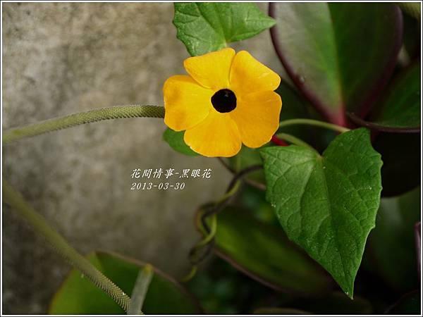 2013-04-黑眼花9