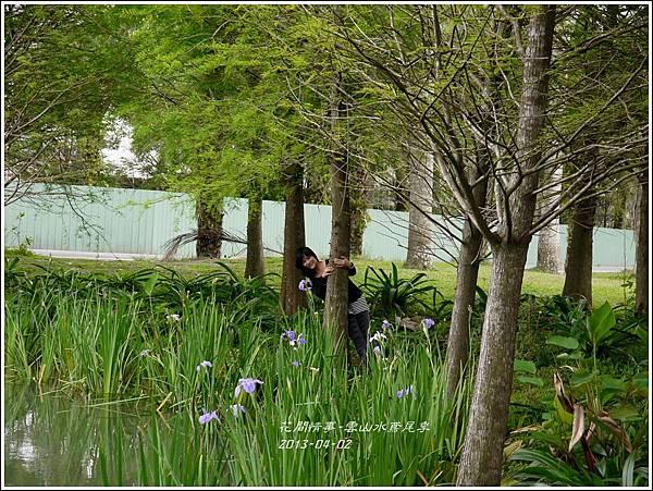 2013-04-雲水山鳶尾季14