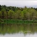 2013-04-雲水山鳶尾季16