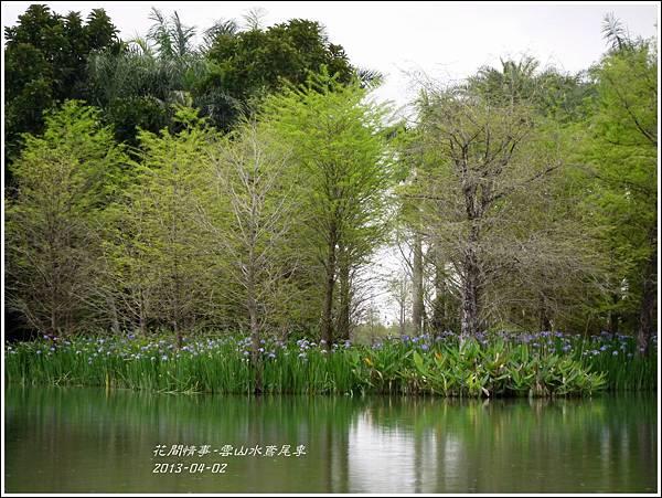 2013-04-雲水山鳶尾季22