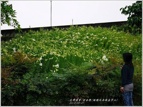 2013-04-百合戀(瑞穗泛舟遊客中心)5