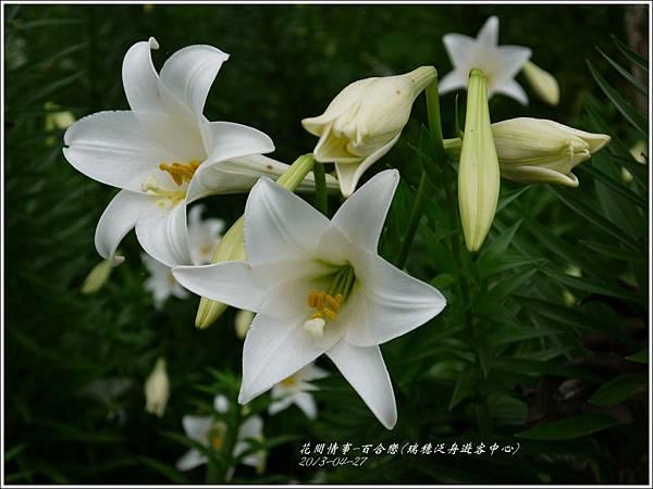 2013-04-百合戀(瑞穗泛舟遊客中心)7