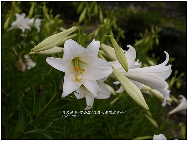2013-04-百合戀(瑞穗泛舟遊客中心)18