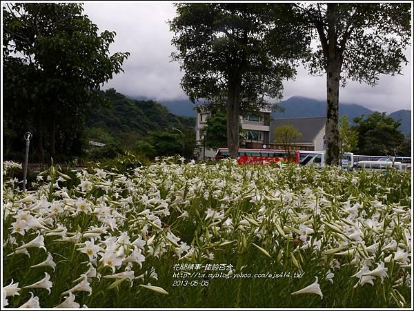 2013-05-百合戀(瑞穗泛舟遊客中心)23
