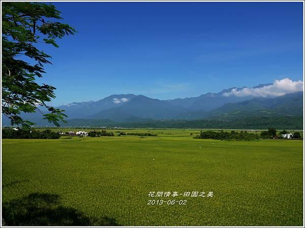 2013-06-田園之美1