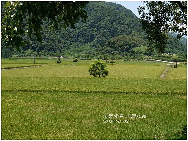 2013-06-田園之美11
