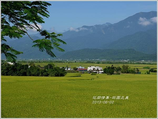2013-06-田園之美3