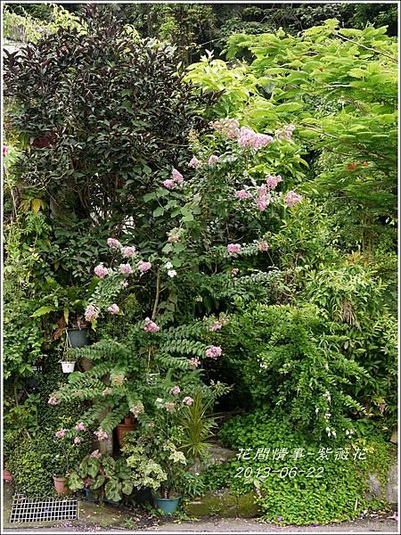 2013-07-紫薇花4.jpg