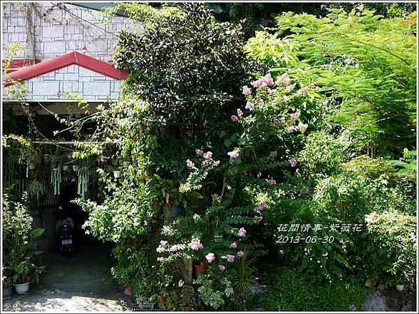 2013-07-紫薇花6.jpg