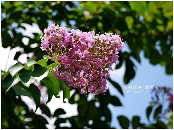 2013-07-紫薇花12.jpg