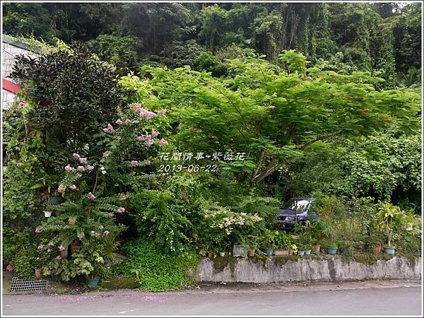 2013-07-紫薇花15.jpg
