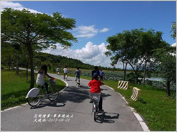 2013-08-池上自行車道8.jpg