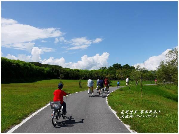 2013-08-池上自行車道7.jpg