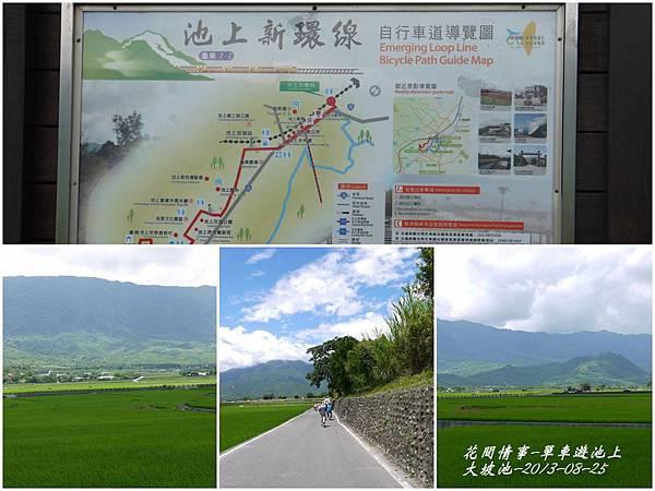 2013-08-池上自行車道14.jpg