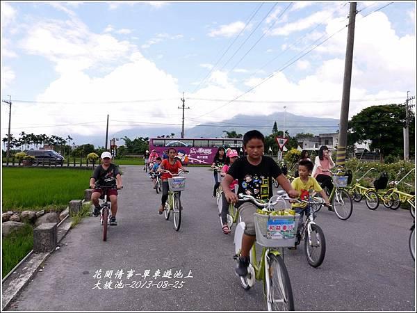 2013-08-池上自行車道20.jpg