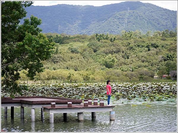 2013-08-池上大坡池17.jpg