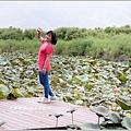 2013-08-池上大坡池20.jpg
