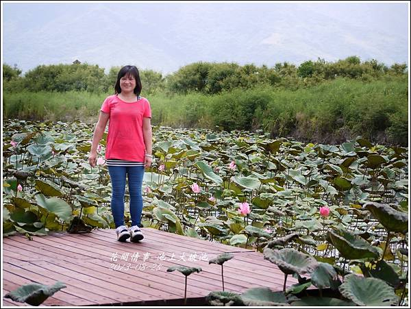 2013-08-池上大坡池21.jpg