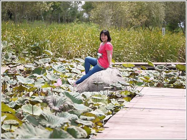2013-08-池上大坡池22.jpg