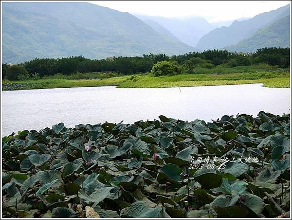 2013-08-池上大坡池26.jpg
