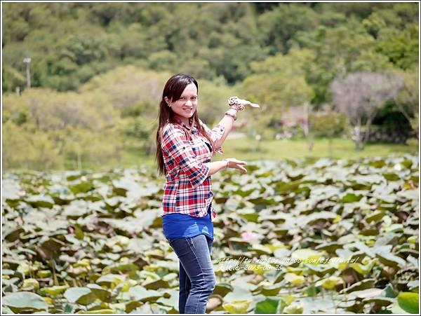 嘉琳篇-大坡池2.jpg