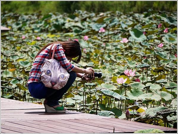 嘉琳篇-大坡池3.jpg