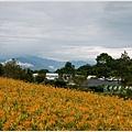 2013-08-赤柯山金針花情23.jpg