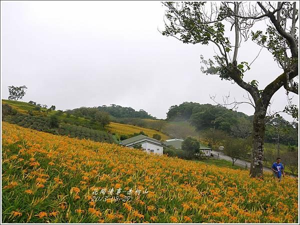 2013-08-赤柯山金針花情41.jpg