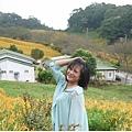 2013-08-赤柯山金針花情43.jpg