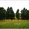 2013-08-赤柯山金針花情48.jpg