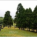 2013-08-赤柯山金針花情49.jpg