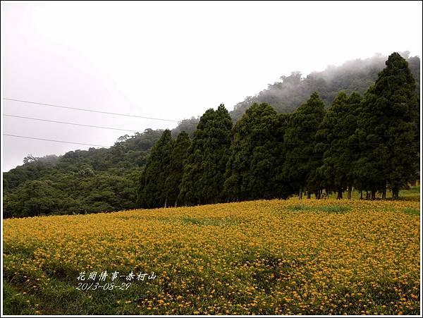 2013-08-赤柯山金針花情52.jpg