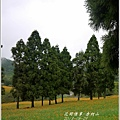 2013-08-赤柯山金針花情55.jpg