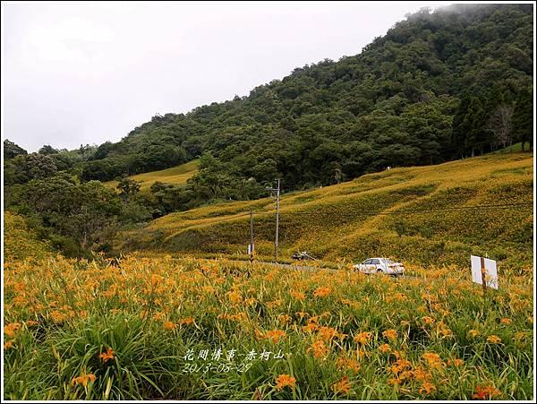 2013-08-赤柯山金針花情57.jpg