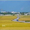 2013-11-金色天堂之路3.jpg