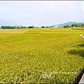 2013-11-金色天堂之路8.jpg