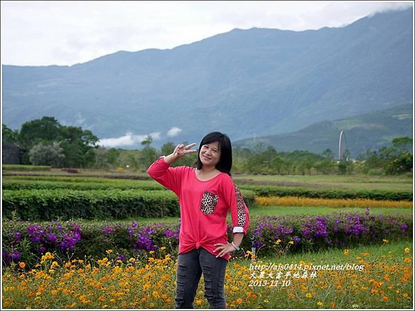 2013-11-大農大富平地森林3.jpg