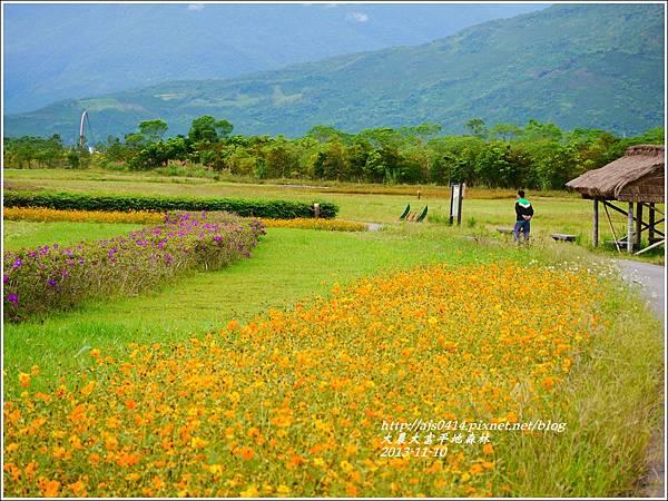 2013-11-大農大富平地森林10.jpg