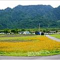 2013-11-大農大富平地森林14.jpg