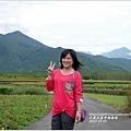 2013-11-大農大富平地森林20.jpg
