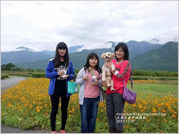 2013-11-大農大富平地森林21.jpg