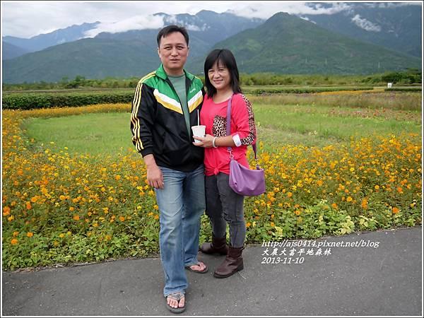 2013-11-大農大富平地森林22.jpg