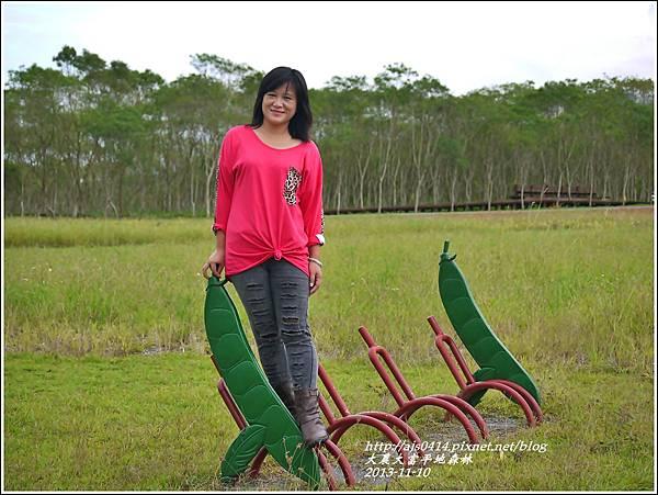2013-11-大農大富平地森林24.jpg
