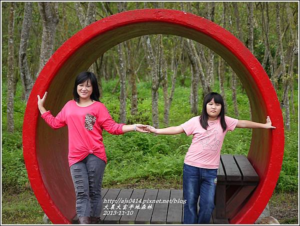 2013-11-大農大富平地森林33.jpg