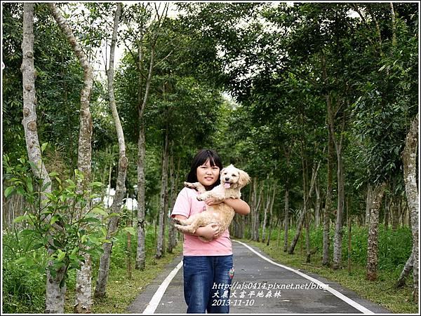 2013-11-大農大富平地森林35.jpg