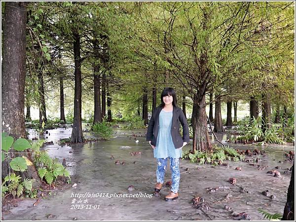 2013-11-雲山水6.jpg