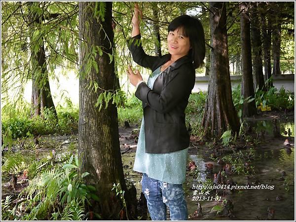 2013-11-雲山水7.jpg