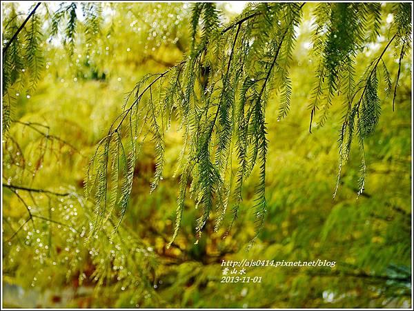 2013-11-雲山水14.jpg