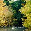 2013-11-雲山水15.jpg