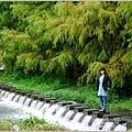 2013-11-雲山水18.jpg